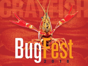 Cover photo for Bugfest Rescheduled for Saturday October 20th